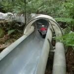 Folke åker slide ner i Dismal Swamp